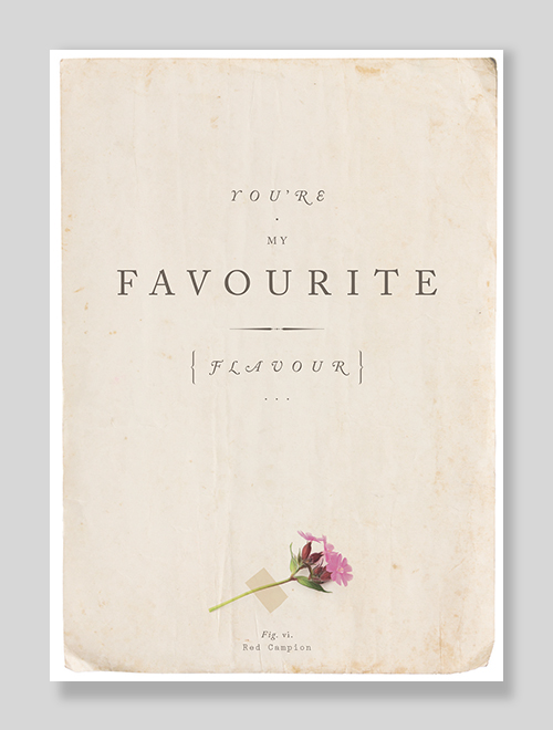 You're My Favourite Flavour Erotic Sexy greeting card